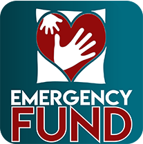 Emergency Fund Icon